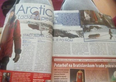 My translation for the movie Arctic appeared in a newspaper.